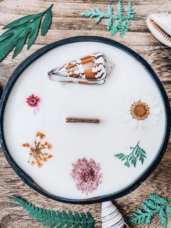 bougie coque noix de coco coconut candle vegetale coquillage fleurs
